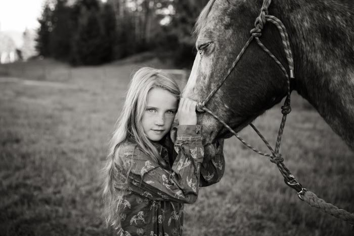 Fall horse-3921